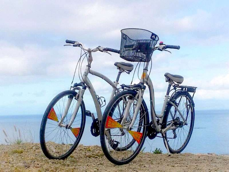 Mr. Bike - Alquiler de Bicicletas