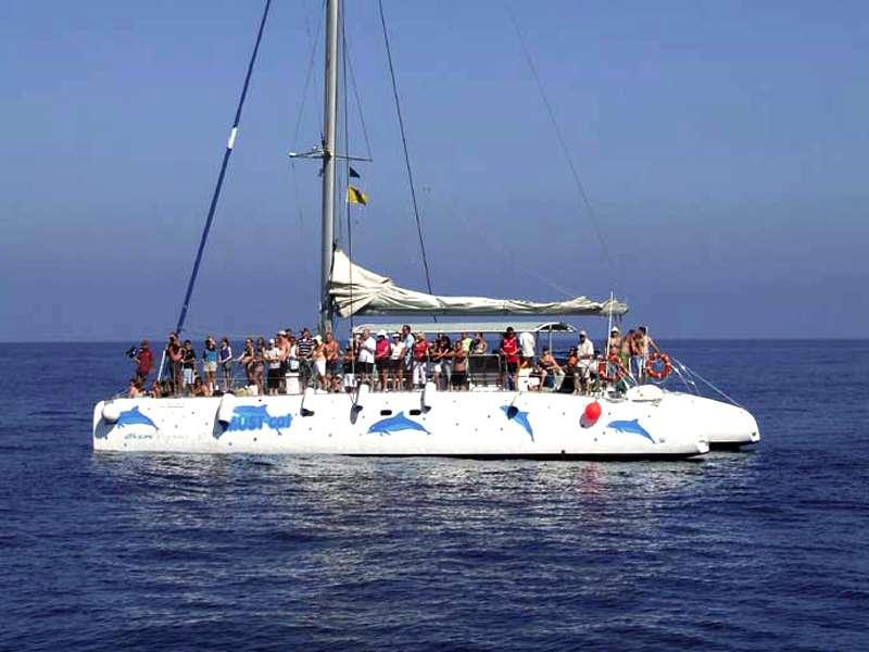 Mustcat Catamarán