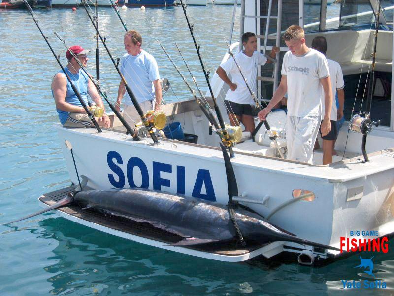 Yate Sofia Fishing Tenerife