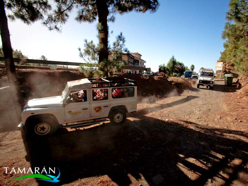Jeep Safari Teide-Masca